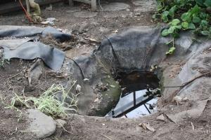 empty water garden