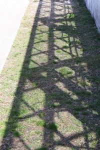 shadow of greenhouse