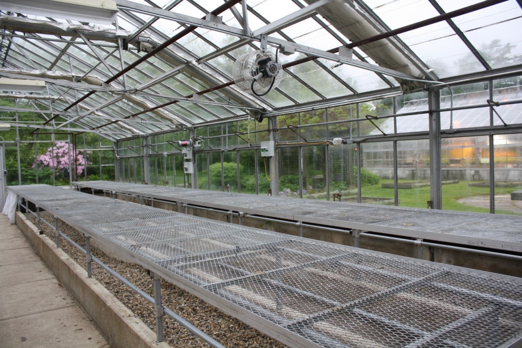 empty greenhouse