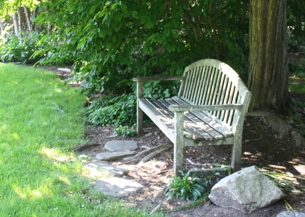 shady side bench
