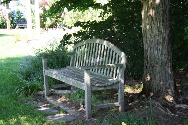 sunny side bench