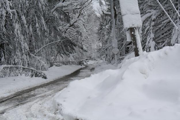 blizzard 2013